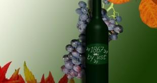 Vino rosso e uva contengono una sostanza antitumorale