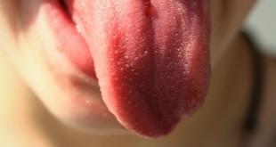 Il sapore: nella lingua o nel cervello?