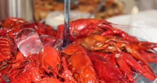 Riparare i nervi con il guscio dei crostacei