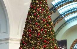 Nel cervello lo spirito del Natale