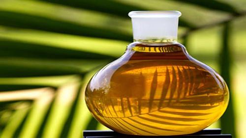 Olio di palma: da evitare per la nostra salute e per quella del pianeta