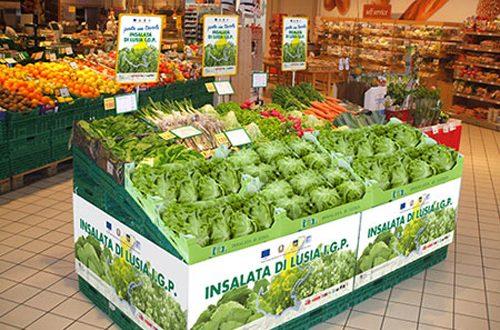 L'oro verde della bassa polesana: l' insalata di Lusia, fresca e ricca di vitamine