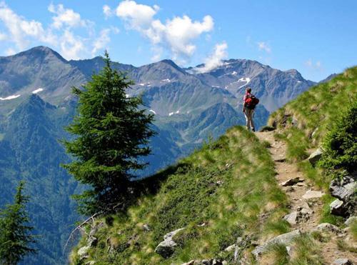 Camminare In Montagna In Alta Quota Un Toccasana Per La Salute