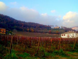 Turismo sostenibile: i mille borghi della bell'Italia: Botticino