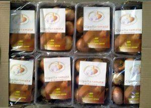 Prodotti tipici Made in Italy: la cipolla ramata di Montoro