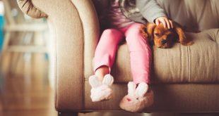 Animali in casa. Vivere serenamente in una famiglia allargata