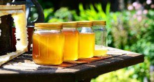Alimenti 10 e lode. Il miele, molto più di un semplice dolcificante