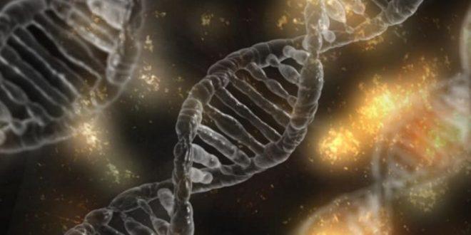 Malattie ereditarie e nutrizione: arriva in Italia il test facile del Dna