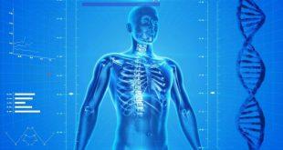 Chiropratica, fine prossima del vuoto legislativo e regolamentazione