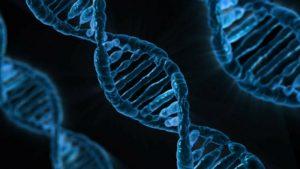 Psoriasi: identificati i geni che ne determinano la comparsa