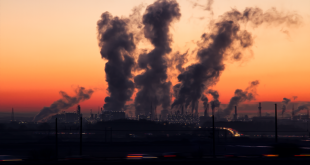 Mascolinità e fertilità: possono essere modificate dall'inquinamento?