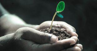 Le 5 fasi della crescita personale: in quale fase ti trovi?