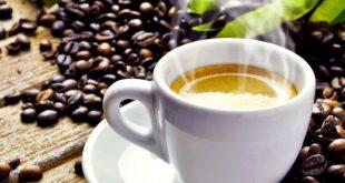 Alimenti 10 e lode. Il caffè: nasce come vino d'Arabia?