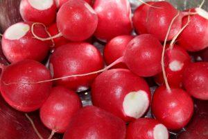 Alimenti 10 e lode. Rilassarsi mangiando ravanelli