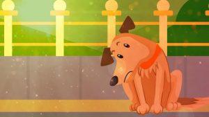 Micio Macho 2019: video musicale contro l'abbandono degli animali