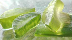 Aloe vera: ecco una pianta dalle mille virtù (che funziona)