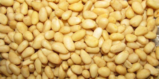 Alimenti 10 e lode. I pinoli: energizzanti e fonte di buonumore