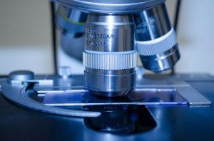 Manipolare il sistema immunitario per vincere la neoplasia