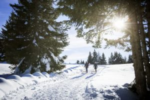Neve e mangiar bene: è magnifico l'inverno di Lana e dintorni