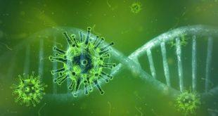 Consulto telematico per il Coronavirus: avviene in caso di sintomi sospetti
