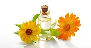 Calendula, fiore dalle mille proprietà, ci aiuta a vivere meglio