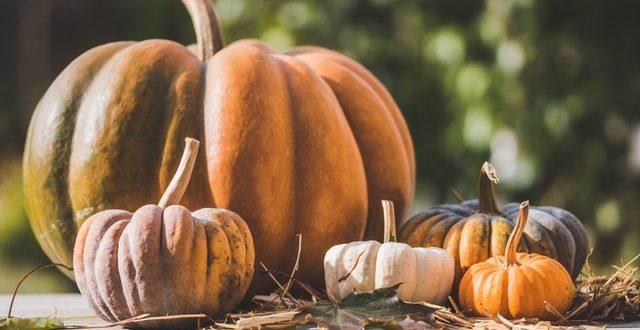 Zucca e cipolla: la ricetta per un contorno da preparare in padella