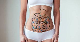 """Microbiota: i batteri """"buoni"""" favoriscono un invecchiamento in salute"""