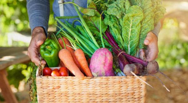 Stagionalità: l'importanza di un'alimentazione con i prodotti di stagione