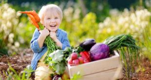 Nutri il sapere: il progetto sull'educazione alimentare dedicato alle scuole