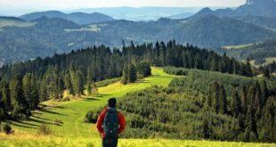 Vacanze in montagna tra escursioni, benessere e natura