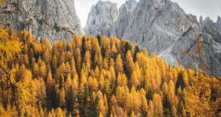 Val Pusteria: tempo di folliage, camminate e peccati di gola